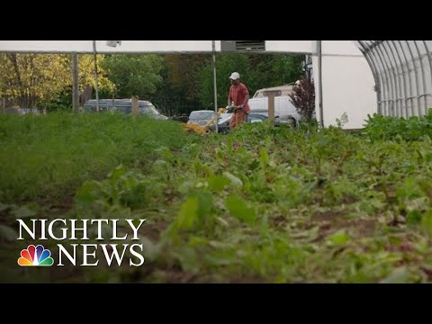 This Detroit Farm Is Helping Former Inmates Stay Out Of Prison | NBC Nightly News