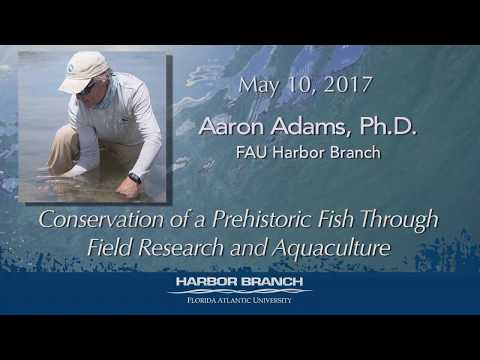 Aaron Adams 5/10/17 Conservation of a Prehistoric Fish Through Field Research and Aquaculture