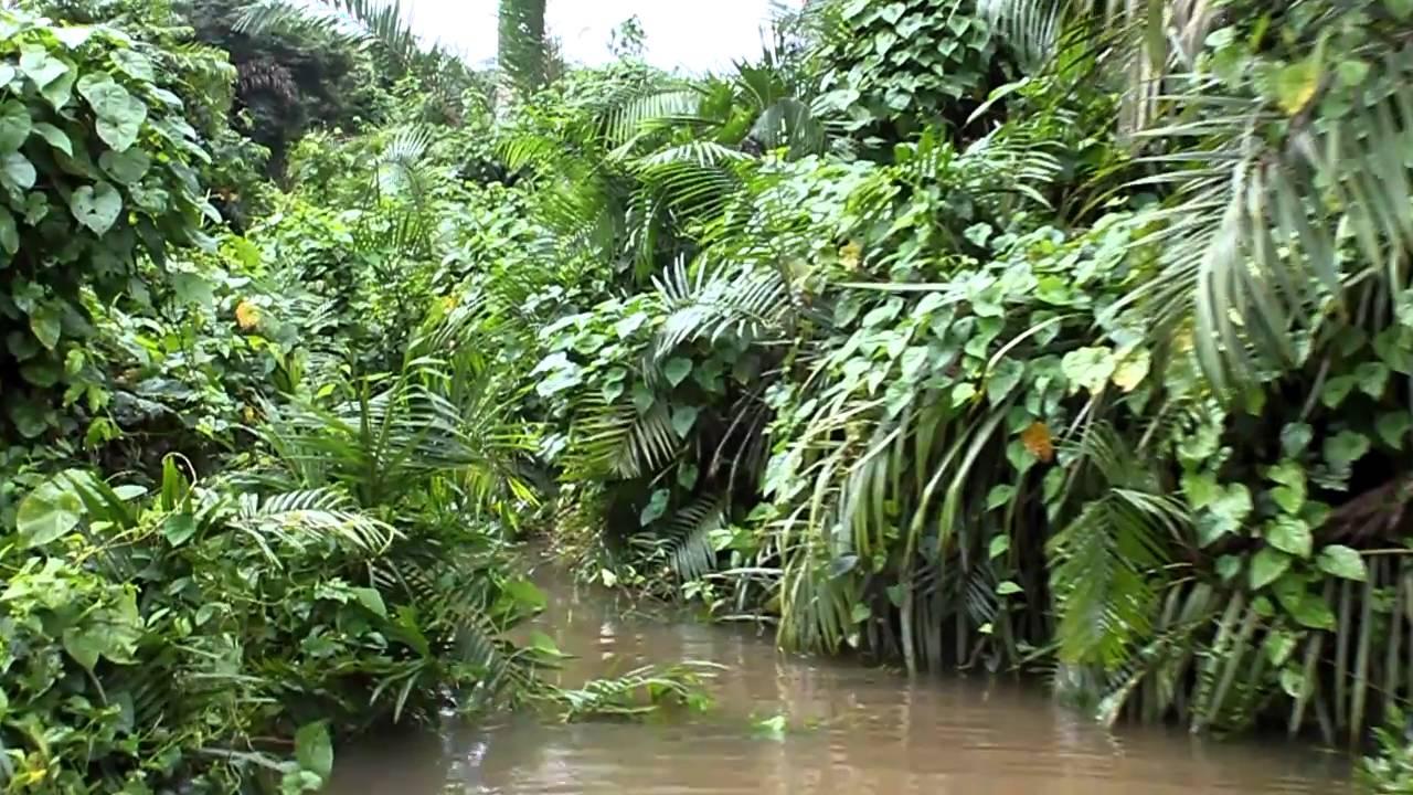 Make Natural Habitats