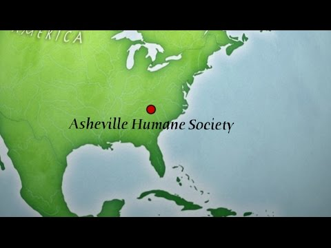 DRAFT V3  Asheville Humane Society Pet Food Assistance