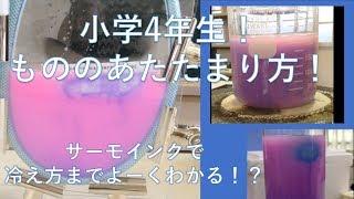 水の温まり方でピンクにサーモインク変わる様子を観察したものに氷を入...