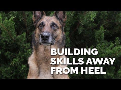 Building Skills Away from Heeling