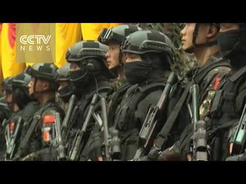 First China-Malaysia joint military drills underway