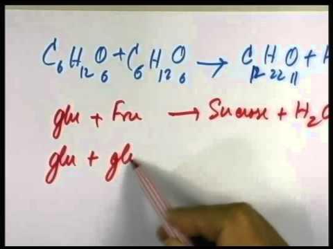 ปี 2556 วิชา วิทยาศาสตร์พื่นฐาน ตอน สารชีวโมเลกุล ตอนที่ 2