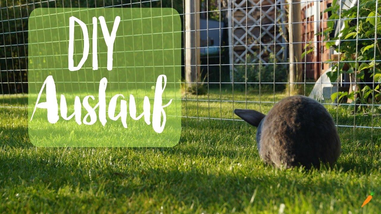 auslauf f r kaninchen selber bauen i diy freilauf youtube. Black Bedroom Furniture Sets. Home Design Ideas