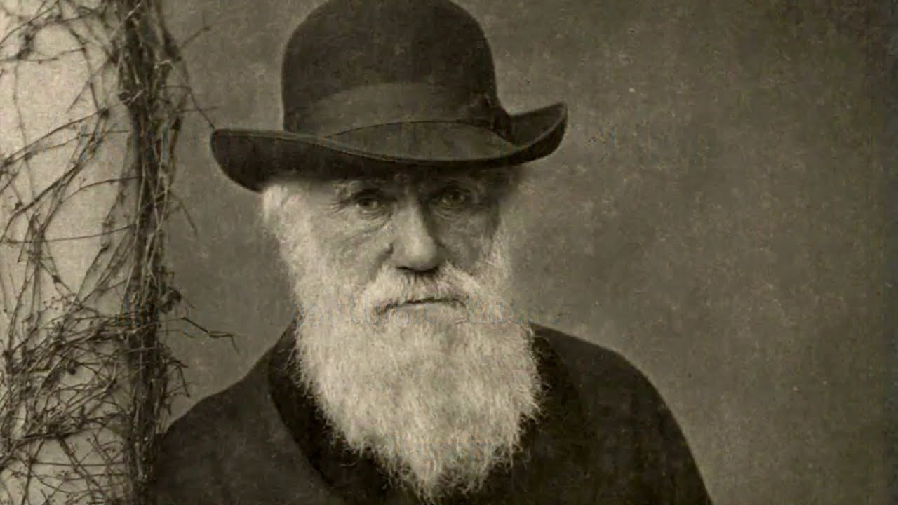Darwin, Africa, and Genocide: The Horror of Scientific Racism