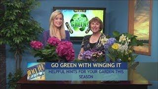 Sally Cunningham: Spring Gardening Tips