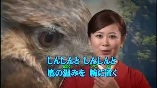 朝日奈ゆう - 鷹匠