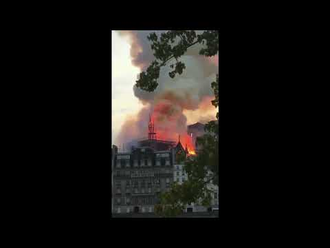 Dave Alexander - The Notre Dame cathedral in France burns