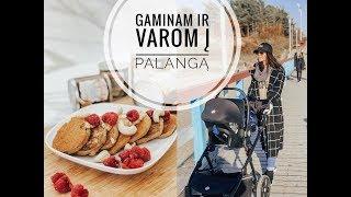 #Vlog: gaminam ir varom į Palangą