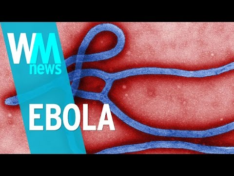 10 Ebola Facts - WMNews Ep. 2