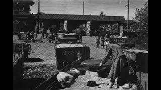 Скачать Хроника 40 50 х годов XX века Послевоенный урожай на Алтае Целина Садоводство Лисавенко