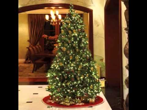 Fully Decorated Christmas Trees