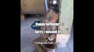 Sorry I Missed Your Birthday - A funny ecard / Happy Birthday song