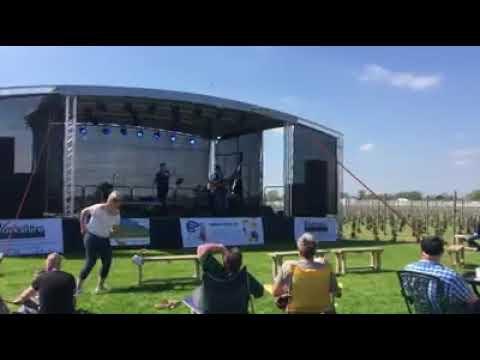 Yorkshire Heart Vineyard - Festival Vibes