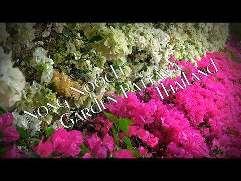 Nong Nooch Garden Pattaya Thailand 4K travel guide bluemaxbg.com