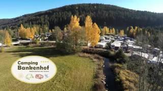 Herbst auf dem Camping Bankenhof im Hochschwarzwald