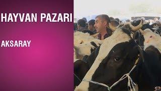 Hayvan Pazarı - Aksaray / 2018