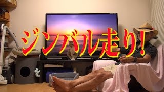 wasserfahren × eiji1783 三浦海岸☆ https://www.youtube.com/watch?v=M...