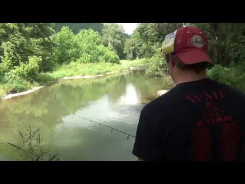Creek Fishing for Rockbass & Smallmouth 2013