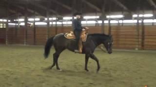 Ellie Becker, Horsemanship schooling, no stirrups 3