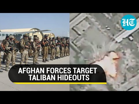 Download Afghanistan forces destroy Taliban hideouts in Kandahar airstrike; 254 militants killed in 24 hrs