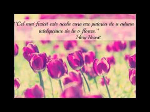 citate frumoase Imagini cu citate frumoase   YouTube citate frumoase