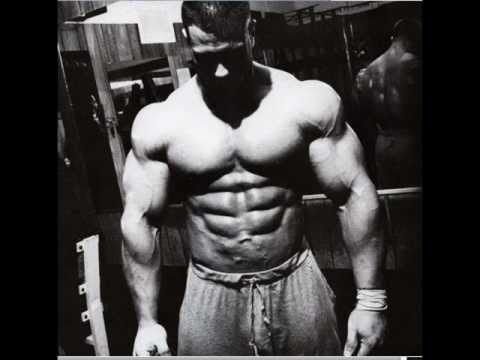 Cover rato de academia letodie youtube - Animal pak motivational quotes ...