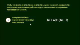 6 2  Умножение одночленов и многочленов
