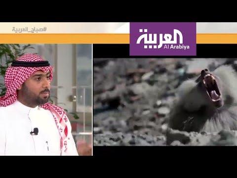 صباح العربية: -جود- فيلم يحكي قصة كفاح السعوديين  - نشر قبل 3 ساعة