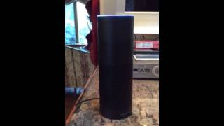 Amazon echo knows dirty words but censors self - first test
