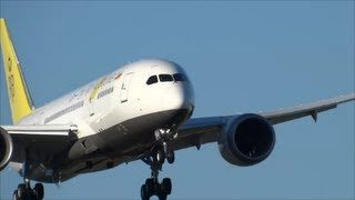 787 Royal Brunei Dreamliner Landing w/ R.A.T. Deployed