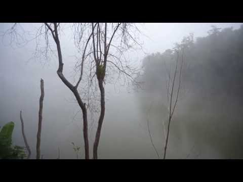 Orangina พาทัวร์ : ตอน ไปชมที่พัก ณ วัดป่าห้วยซวก เชียงคาน