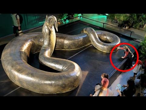 7 furchteinflößende, ausgestorbene Tiere