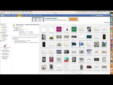 Установка сторонних индикаторов в Metatrader на MAC OS без бубна | Дмитрий Чуга