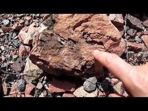 Можно ли растворить камни в почках? Рассказывает врач