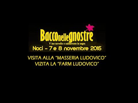Bacco nelle Gnostre  -Visita Masseria Ludovico-