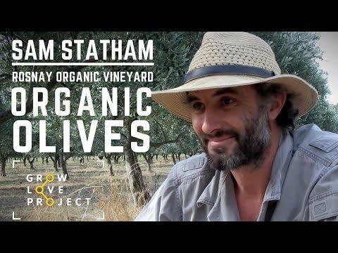 Meet Sam the Organic Farmer