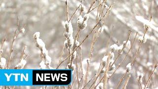 [날씨] 오늘 전국 비·눈...오후부터 기온↓ / YTN (Yes! Top News)