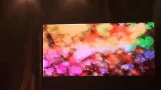 プルカワ戦士(恵比寿マスカッツ) - ゴーゴー…プルカワ