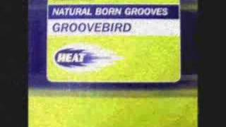 Natural Born Grooves - Groovebird (Baby blue mix)
