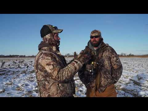 MidWest Outdoors TV #1699 - Late Season Field Duck Hunt In Central IL.