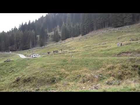 8 Historiquè Rallye San Martino di Castrozza 2017
