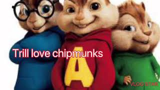 Trill love chipmunks