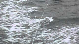 De la bouée à St Pair sur Mer - Manche