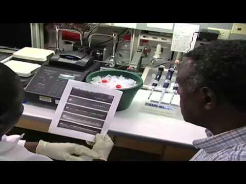African Science Hero
