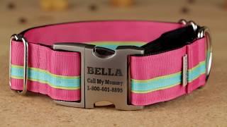 Stripe Martingale Dog Collar - Comfort - If It Barks