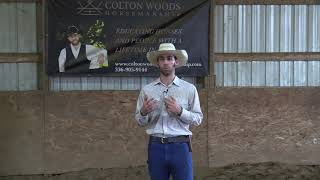 Teaching Your Horse to Work at Liberty Series | Introduction
