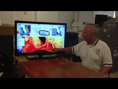 Oceanographic analyses for Chloe McCardel