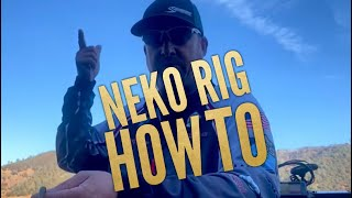 Pro Talk: How Bassmaster Elite Series Pro, Randy Pierson rigs the NEKO RIG.